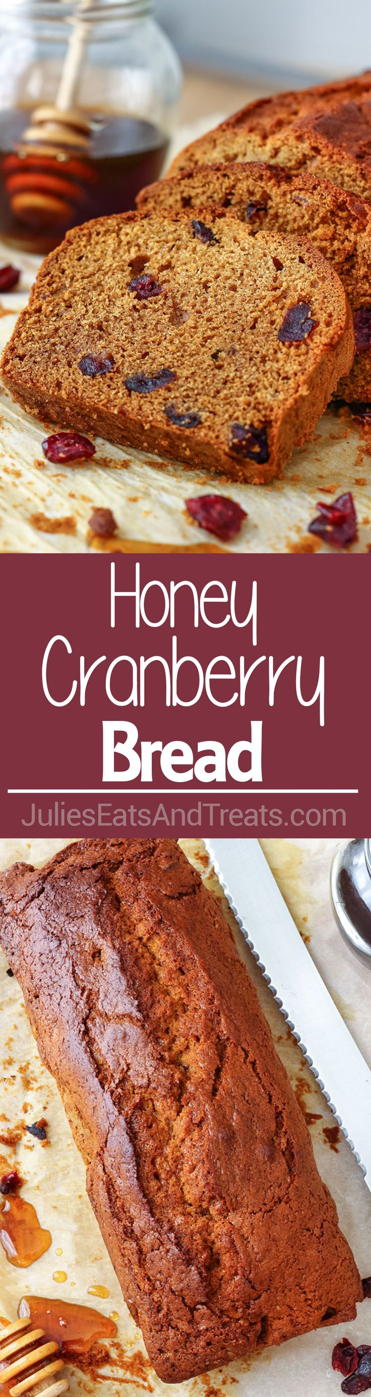 Honey Cranberry Bread ~ This delicious bread is perfect for breakfast, brunch or afternoon snack. Spread it with butter and jam and you are in for a treat! ~ http://www.julieseatsandtreats.com