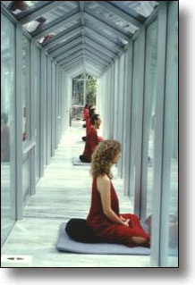 """Osho's """"walkway""""... Entered my first vipassana meditation there... <3"""