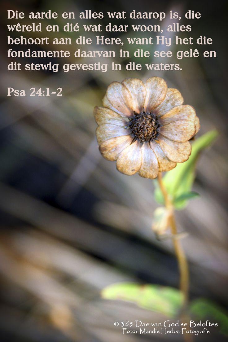 Dag 153 Psa 24:1-2 'n Psalm van Dawid. Die aarde en alles wat daarop is, die wêreld en dié wat daar woon, alles behoort aan die Here, want Hy het die fondamente daarvan in die see gelê en dit stewig gevestig in die waters.