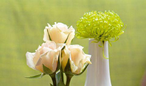 Niet nad dobrú radu: Ako vyčistiť vázu s úzkym hrdlom? Takto to zvládnete! | Casprezeny.sk