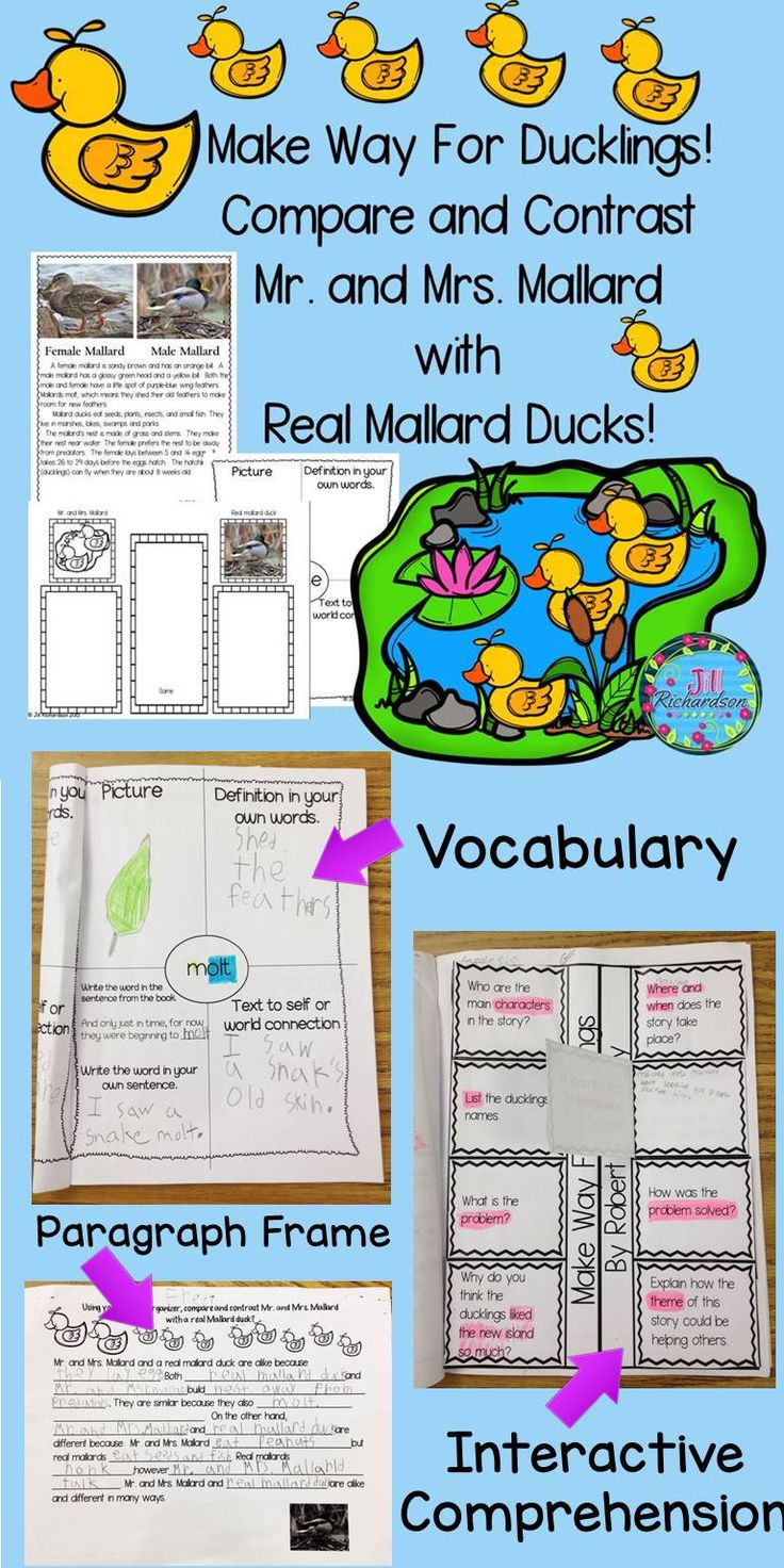 Make Way for Ducklings by Robert McCloskey is a classic that children adore! This activity uses paired texts to compare and contrast Mr. and Mrs. Mallard with a real mallard duck. Included: Vocabulary Cards 7 vocabulary graphic organizers Comprehension interactive printable Compare and Contrast graphic organizer Writing Sentence Frame Photographs of a male and female mallard duck