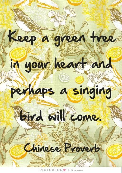 Keep a green tree in your heart and perhaps a singing bird will come. -Chinese Proverb