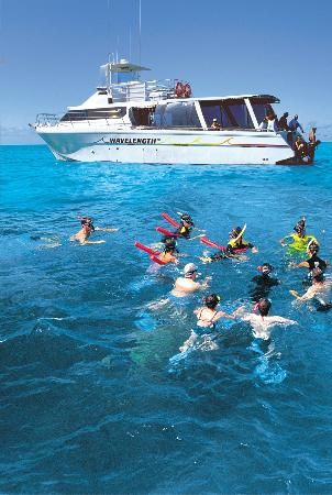 Wavelength Marine Charters Looks good, groups of 30, snorkeling only