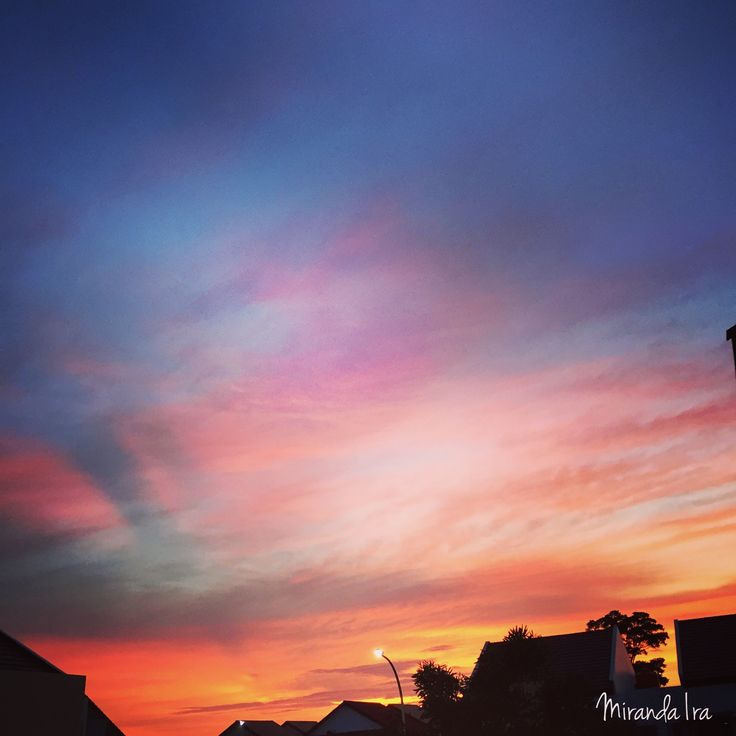 How can i'm not in love with sunset  -Dec.23.2015-