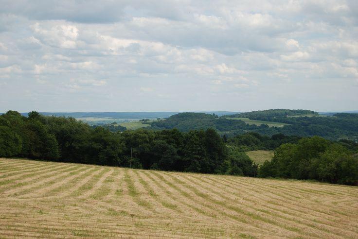 """Wzgórze """"Optyń"""". Widok z drogi fortecznej w okolicach Baterii Kruhel."""
