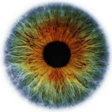 'The altering eye alters all'.-William Blake #poetry #inspiration #transformation #empowerment #spirituality