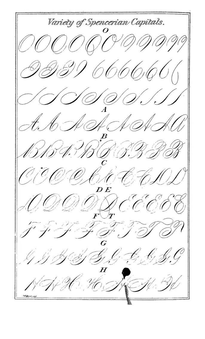 85 Best Images About Calligraphy Alphabets On Pinterest