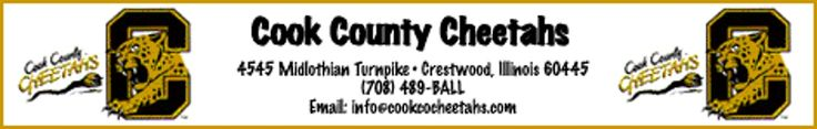 The Cook County Cheetahs are also putting official game worn jerseys up for sale during the holidays. Don't miss the opportunity to get a jersey worn by one of your favorite Cheetah players by contacting us at Cheetahs@email.msn.com . For $100.00, you get a Cheetah doll and your choice from on of the following jerseys: