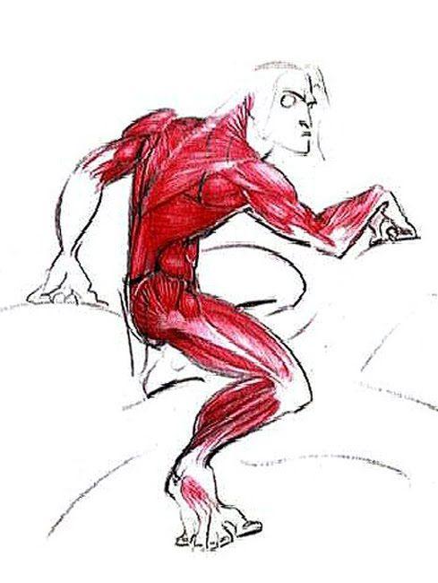 Tarzan (1999) - First Sketches, Tarzan Anatomy  Hands