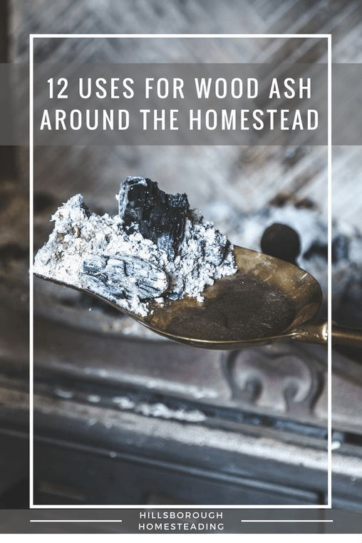 875 best Homesteading images on Pinterest | Gardening, Garden ...