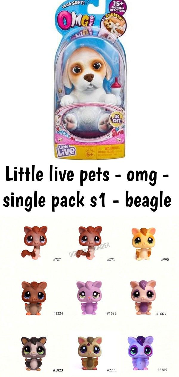 Little Live Pets Omg Single Pack S1 Beagle Nicole S Lps Blog
