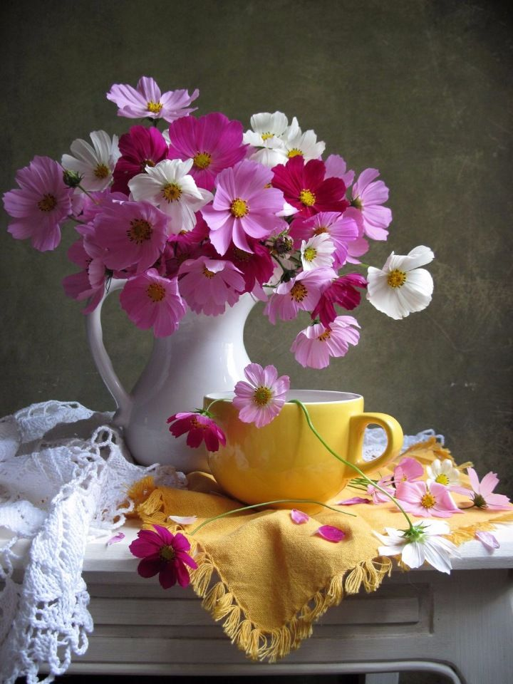 Красивые фото цветов доброго утра запросу лавки