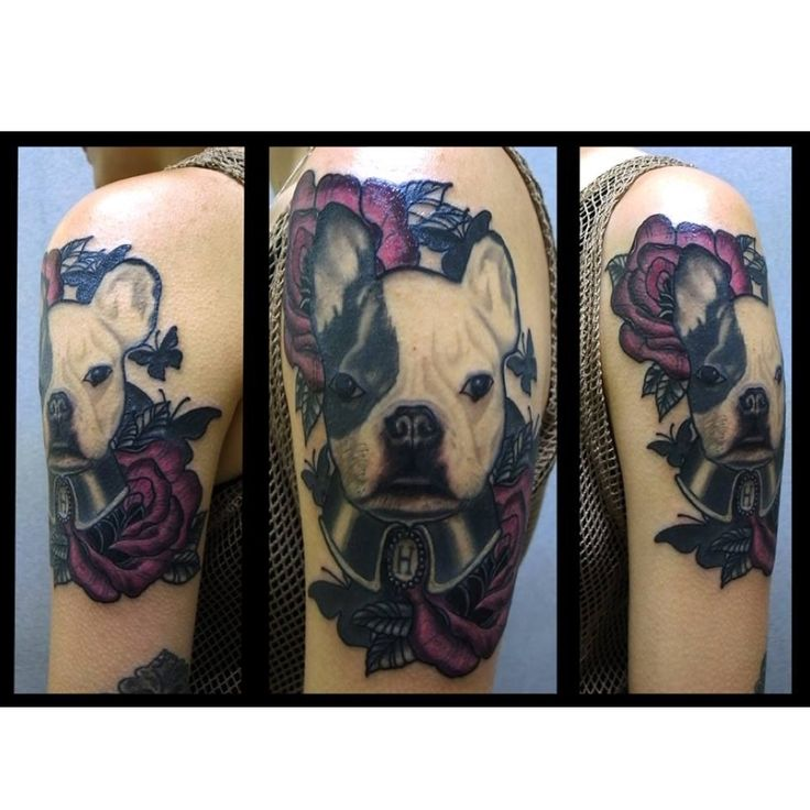 French Tattoo Ideas: 14 Best Images About Frenchies Tattoos On Pinterest