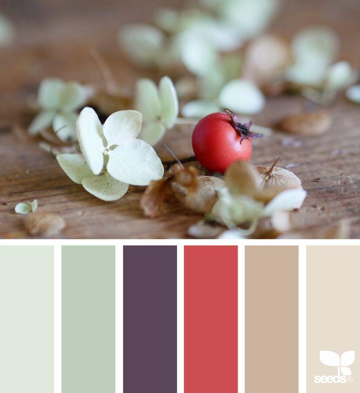 Holiday Tones - https://www.design-seeds.com/seasons/winter/holiday-tones-4