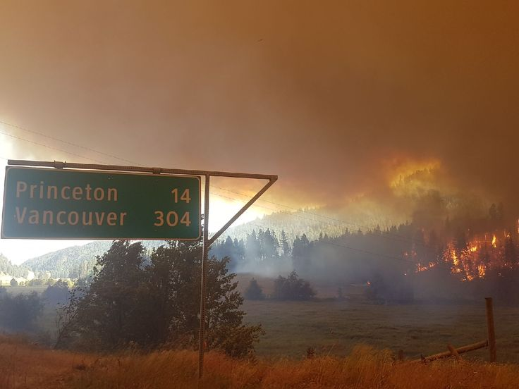 BC's forest fires show us the true cost of the fossil fuel economy | West Coast Environmental Law