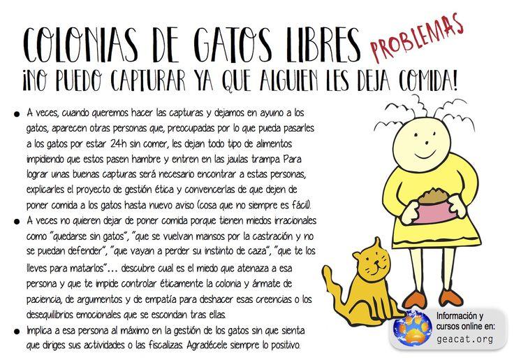 Problema 20: Miedos infundados  #CES  #GestiónÉtica  Curso: https://goo.gl/YXAFJC  Pdf: