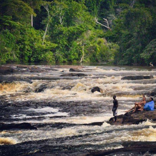 Beautiful Surinam nature