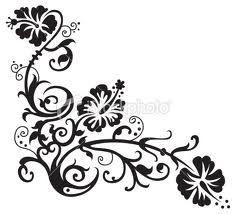 drawn hawaiian flowers