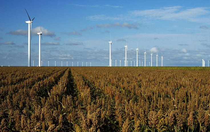 Google en Microsoft in wind energie.