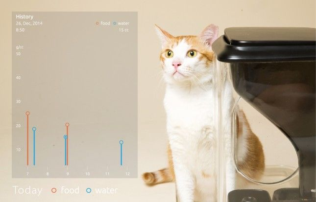 This Gadget Feeds Your Cat Using Facial Recognition Software via Brit + Co.