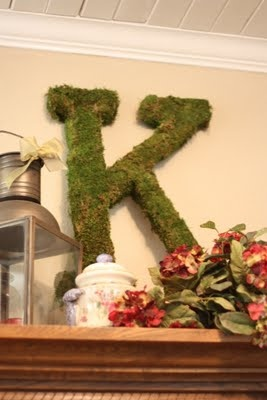 moss & hot glue: Decor Moss, Glue Guns, Glue Letters, Mossy Letters, Front Doors, Covers Letters Diy, Big Mossy, Ideas Sparker, Moss Covers Letters