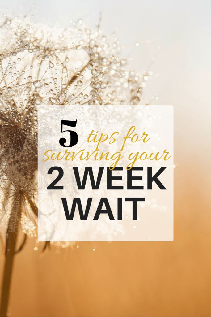 5 tips for surviving your 2 week wait | Provokeasmile.com