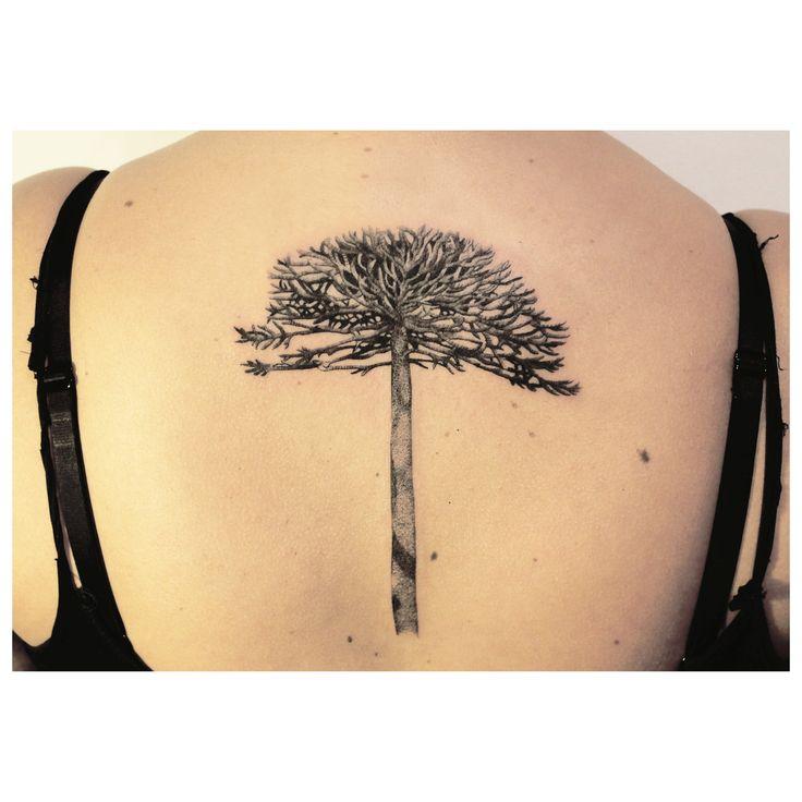 Araucaria árbol tatuaje