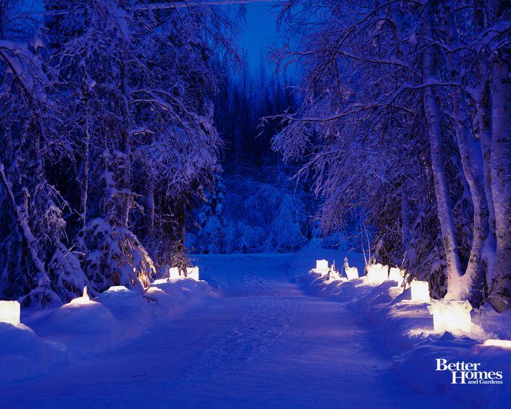 nx97snowwinterwoodtreeroadnightnature Winter