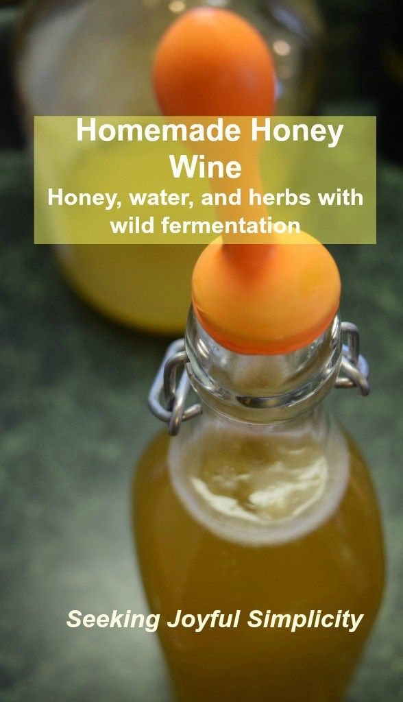 Making Honey Wine - Honey, Water, and Wild Fermentation. It's exciting and simple and tastes so good!