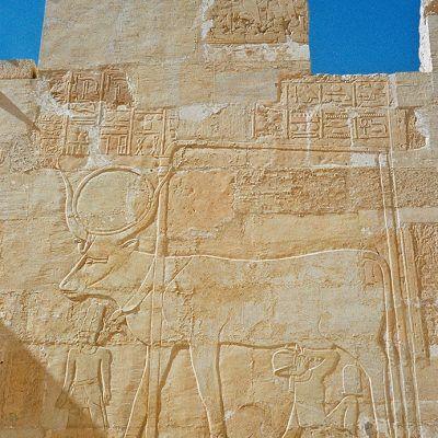 Luxor - Im Tempel von Hatschepsut