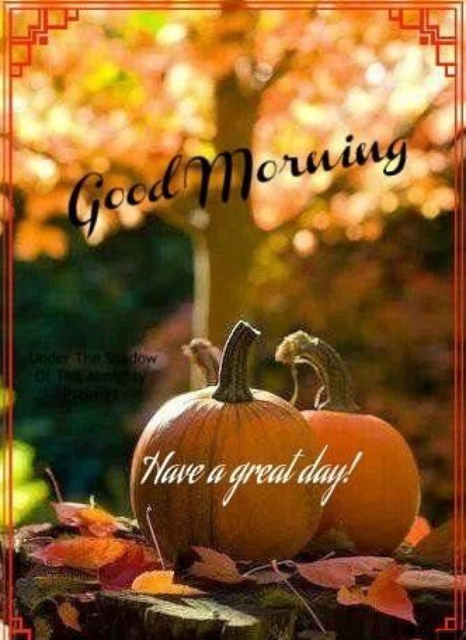 Pin By Ellen Slayton On Fall Morning Greetings Good Morning Images Good Morning Greetings Morning Greeting