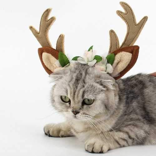 FABRIC: Plush Features:  cute antlers with flower design.  3 size for your choice, adjustable headband.  Perfect decor for pet.   Specification:    Color: As the picture show  Material: plush  Size: S,M,L(as the picture shows)   Packing Includes:    1 x Pet Headband           *Free shipping in USA *pet supplies online shopping