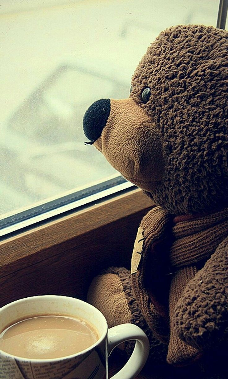 сандрацкая картинка с медвежонком скучаю люди начала