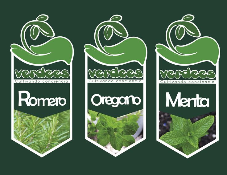"""Etiquetas """"Verdees"""" plantas"""