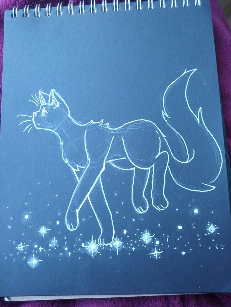 I drew a Warrior Cat in StarClan with a white gel pen~☆