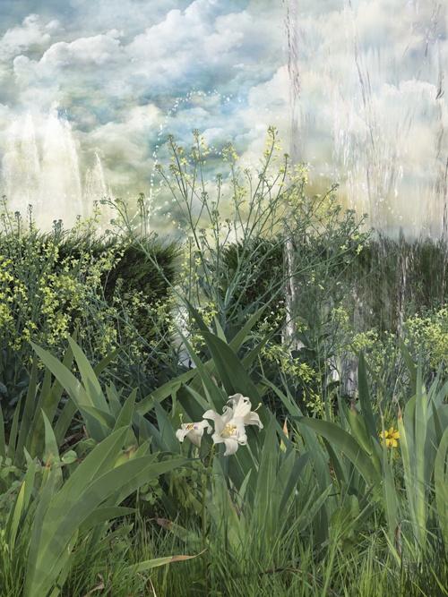 Fotografía nº 3 de la serie 'Alegría en el jardín'. 2011