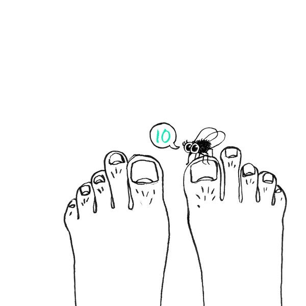 This is the Karo Rigaud 2014 Advent Calendar…#10 - Feet - Pieds - Füße - Fly - Mouche - Fliege