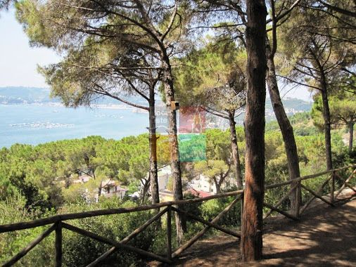 I panorami dell'Oasi naturalistica di Monte Nuovo abbracciano tutta la costa…