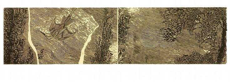Silent Flight_jk_.jpg (800×288)