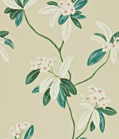 Oleander (212131) - Sanderson Wallpapers - Oleander is a contemporary design of trailing oleander stems in a beautiful painted effect. Shown here in orange/teal - more colours are available. Please request a sample for true colour match. Paste-the-wall product.