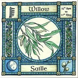 Image result for saille ogham
