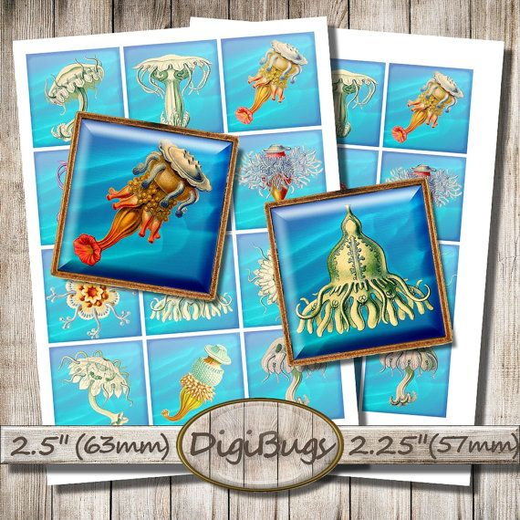 Sea Animals, Digital Collage Sheet, Printable Squares, Sea Life, Hydra Jellyfish, Decoupage Paper, Instant Download, Printable Images, b4
