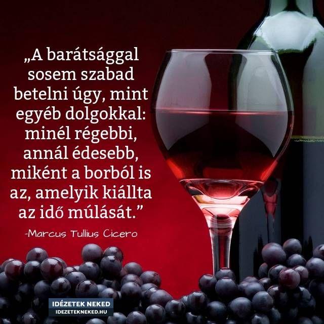 alkohollal kapcsolatos idézetek Cicero idézete a barátságról | Life, Humor, Best friends
