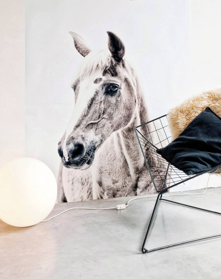 You like horses? Check this nice looking wall stocker for in your bedrooom, working space,...