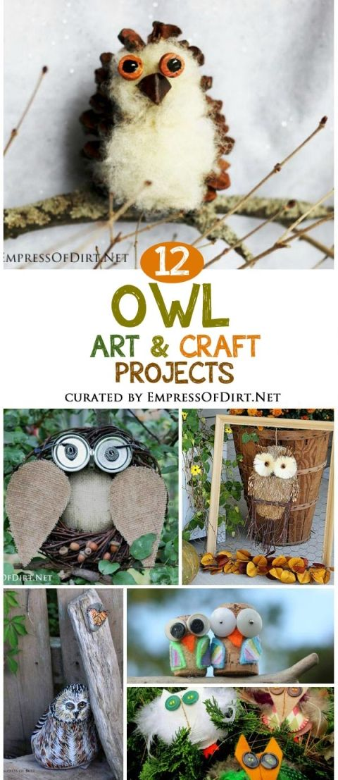 Love owls? These simple owl art and craft projects use common household materials and can be made in an afternoon. Some are perfect for kids to do on their own, others are intended for family fun with adult supervision. Choose from wood, stone, pumpkins, pinecones, and recycle bin items. There's even one or two you can eat!