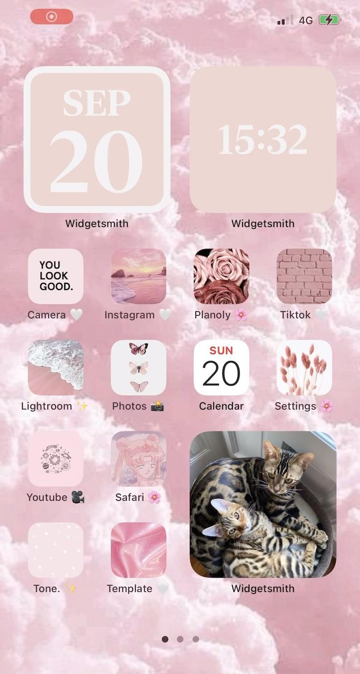 IOS 14 pink aesthetic 🌸 [Video] in 2020 Iphone apps