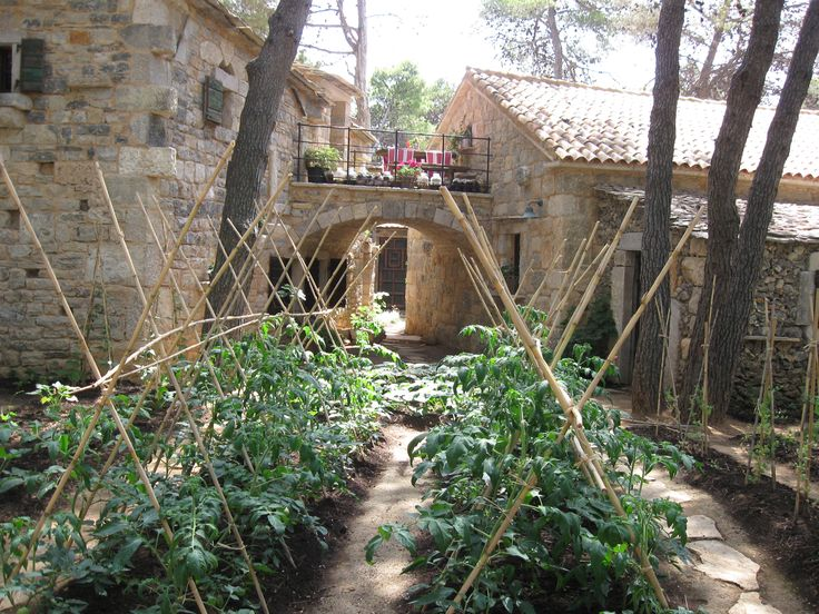 Our eco garden in authentic Solaris #Dalmatian Ethno Village
