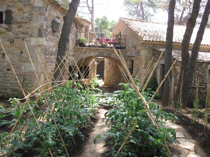 Our eco garden in authentic Solaris #Dalmatian Ethno Village