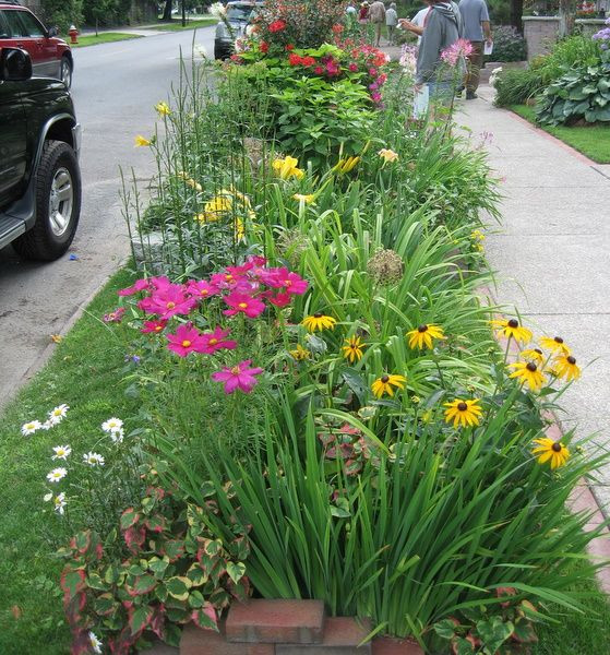 1000 Ideas About Online Landscape Design On Pinterest: 1000+ Images About Curbside Gardens On Pinterest