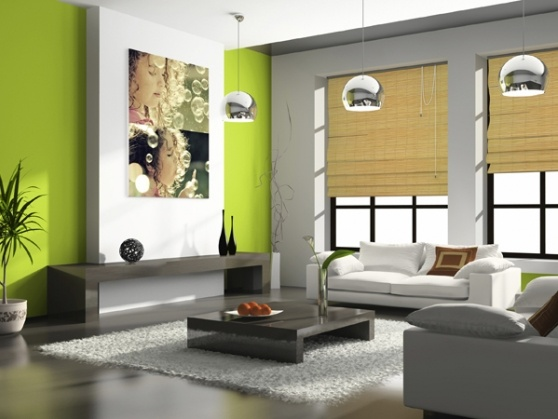 11 Best Images About Feature Wall On Pinterest Green Living Rooms Olives And Accent Walls